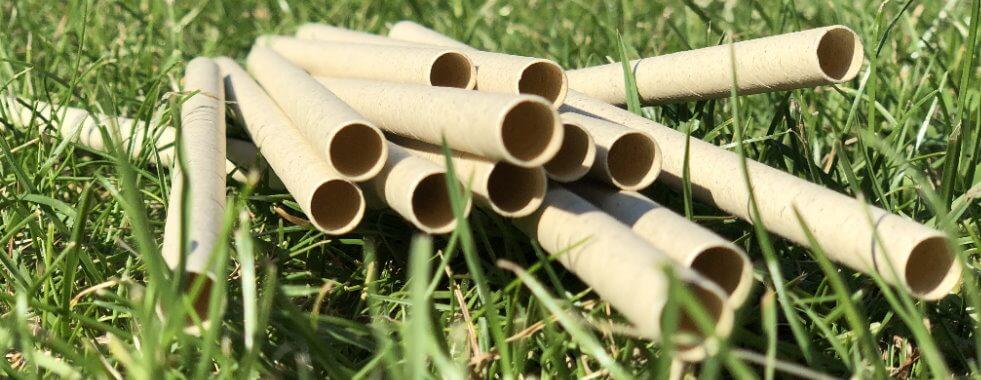 Trinkhalme aus Gras Papier